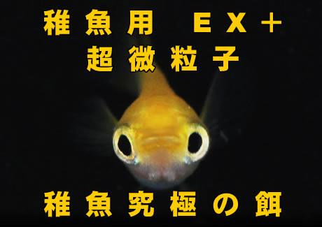 超微粒子 稚魚究極の餌【100g】
