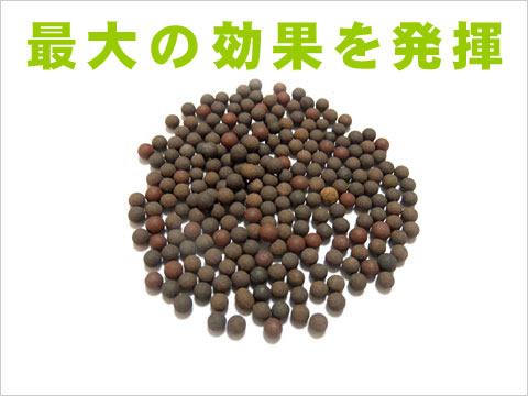 メダカ命水石【ビーズ 1kg】