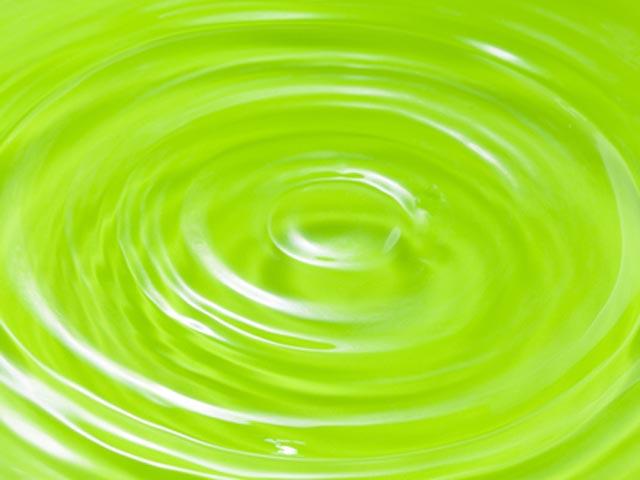 ミドリムシ水(ユーグレナ)